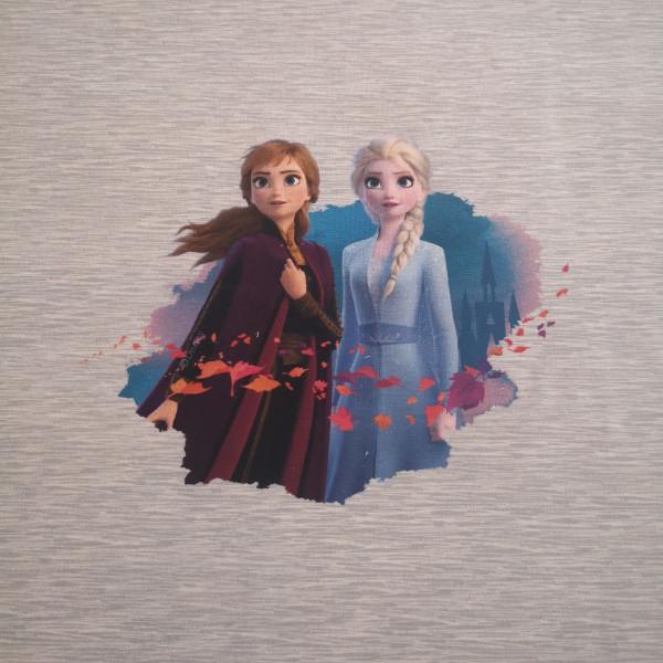 Baumwolljersey-Panel Anna & Elsa